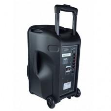 Osawa OSW-9130 80 Watt Portatif Taşınabilir Şarjlı Anfi